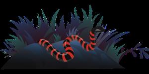 snake-576739_640